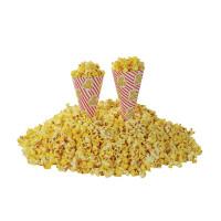 Popcorn tuutti paperia 0,7 litraa yksittäiskappale